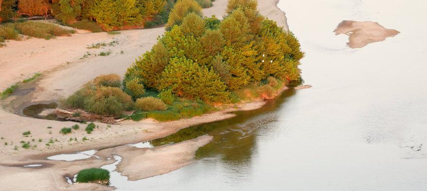 Les huttes de castor sur la Loire, à découvrir au petit matin
